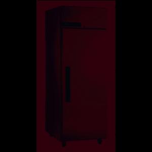 Foster 600Ltr Cabinet Freezer